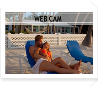 Videos; Amenities and Activities; Web Cam. Live chat system
